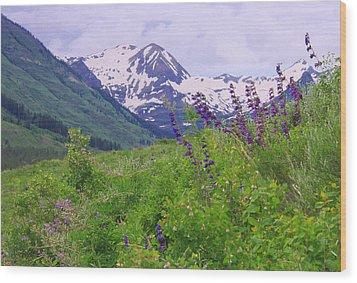 One-sided Penstemon Wood Print