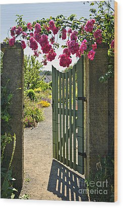 Open Garden Gate With Roses Wood Print by Elena Elisseeva
