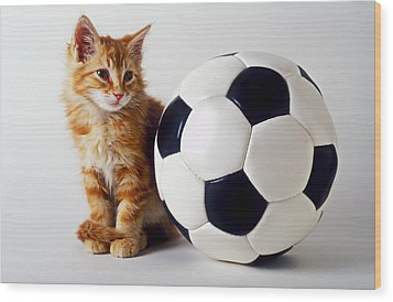 Orange And White Kitten With Soccor Ball Wood Print by Garry Gay