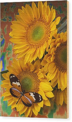 Orange Black Butterfly And Sunflowers Wood Print by Garry Gay