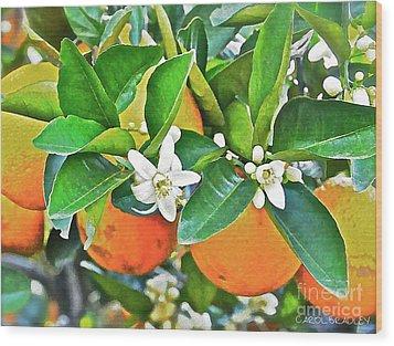 Orange Blossom Special Wood Print by Carol  Bradley