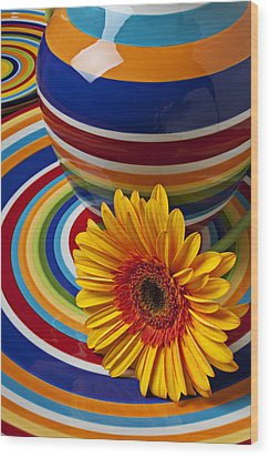 Orange Daisy With Plate And Vase Wood Print by Garry Gay