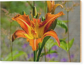 Orange Day Lily Wood Print by Tikvah's Hope
