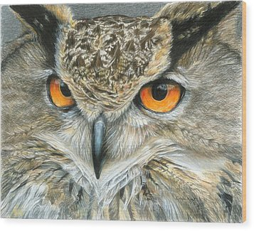 Orange-eyed Owl Wood Print