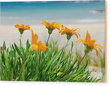 Orange Flowers On The Sunny Ocean Beach. Wood Print by Yurix Sardinelly