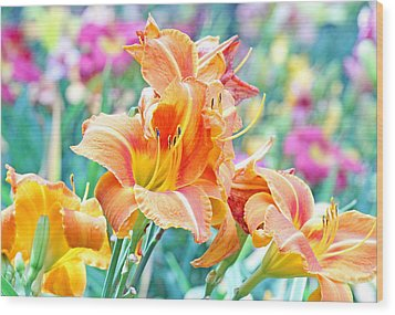 Orange Lilies Wood Print by Becky Lodes