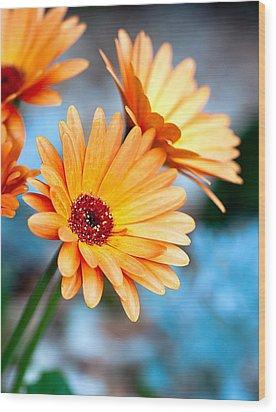 Wood Print featuring the photograph Orange Mood by Anna Rumiantseva
