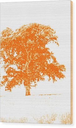 Orange Oak Wood Print by Alan Look