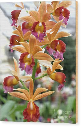 Wood Print featuring the photograph Orange Orchids by Debbie Hart