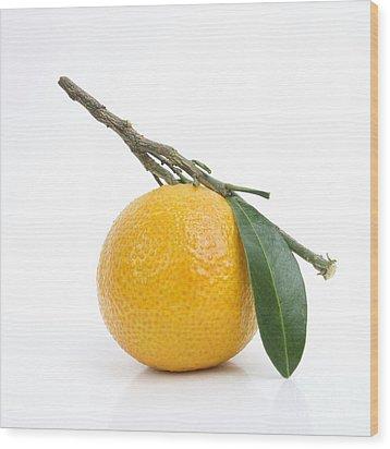 Orange Satsuma Wood Print by Bernard Jaubert