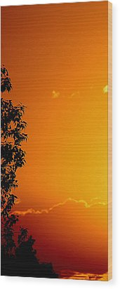 Orange Silhouette Wood Print by Louise Mingua