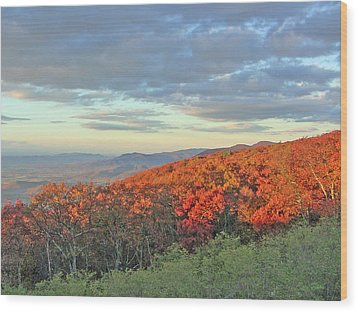 Orange Velvet In Shenandoah Wood Print by Shirin Shahram Badie