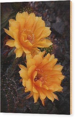 Orange You Beautiful  Wood Print by Saija  Lehtonen