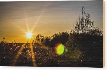 Wood Print featuring the photograph Orangina by Matti Ollikainen