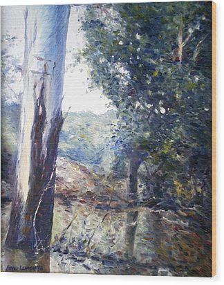 Orara River In Flood Nsw Australia 1998 Wood Print by Enver Larney