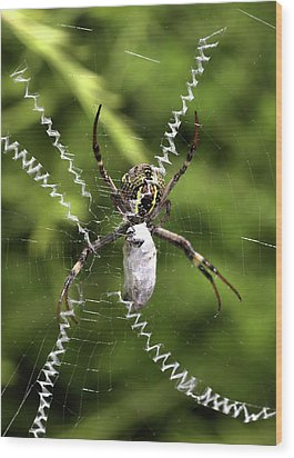 Wood Print featuring the photograph Orb Weaver by Joy Watson