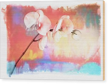 Orchid 3 Wood Print by Mauro Celotti
