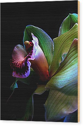 Orchid Gem Wood Print by Shirley Sirois