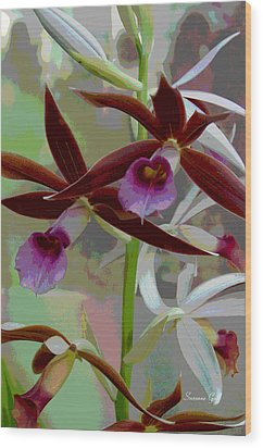 Orchid Sonata Wood Print by Suzanne Gaff