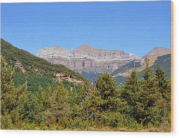 Ordena National Park Wood Print by Miguel Sotomayor