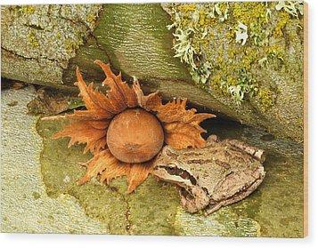 Oregon Combo Wood Print by Jean Noren