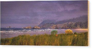 Oregon Seascape Wood Print by David Patterson