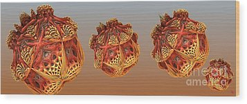 Organic Orbs Wood Print by Ron Bissett