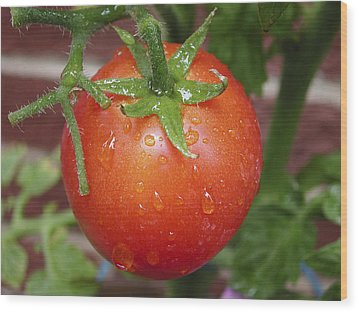 Wood Print featuring the photograph Organic Tomato  by Nick Mares