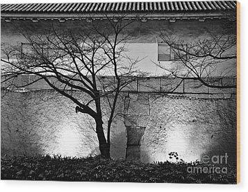 Osaka Castle Wall Wood Print by Dean Harte