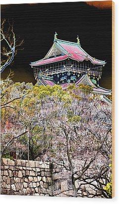 Osaka Temple Wood Print by Allan Rothman