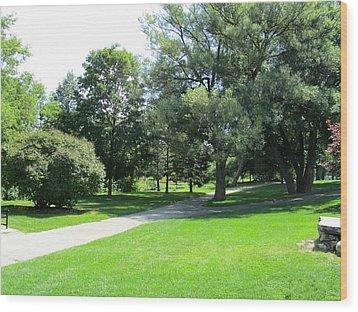 Oshawa Botanical Garden 2 Wood Print by Sharon E Steinhaus