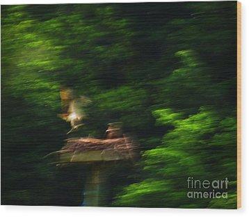 Osprey Motion Wood Print by Rrrose Pix
