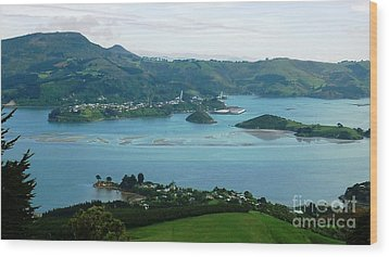 Otago Harbour Wood Print by Therese Alcorn