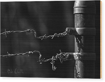 Other Side Of The Fence Wood Print by Bob Orsillo
