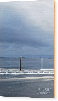 Wood Print featuring the photograph Out And About by Linda Mesibov