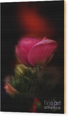 Wood Print featuring the digital art Out Of Darkness Anemome by Rosa Cobos
