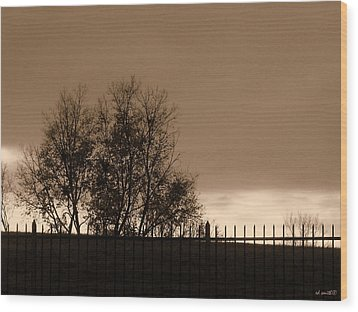 Out Of Reach Wood Print by Ed Smith