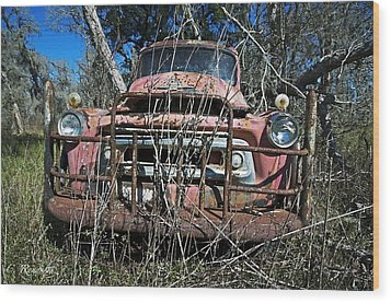Wood Print featuring the photograph Out To Pasture by Cheri Randolph