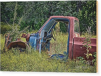 Out To Pasture Wood Print by Ken Williams