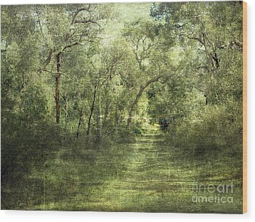 Outback Bush Wood Print