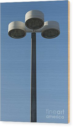 Outdoor Lamp Post Wood Print by Blink Images