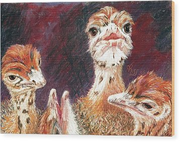 Outsdoorn Babes Wood Print by Vicki Ross