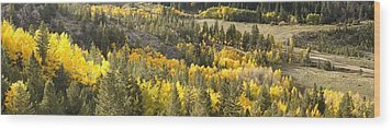 Outside Nederland Co Wood Print by Larry Darnell