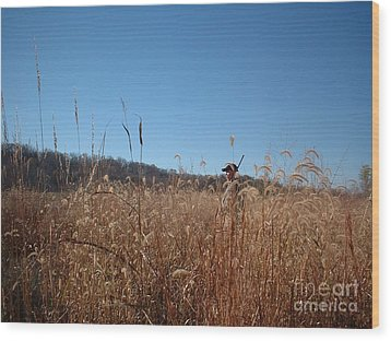 Wood Print featuring the photograph Outstanding In His Field by Mark McReynolds