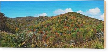 Over The Cherohala Skyway Wood Print by Paul Mashburn