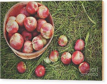 Overhead Shot Of A Basket Of Freshly Picked Apples Wood Print by Sandra Cunningham