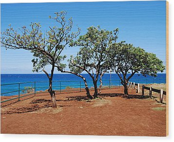 Wood Print featuring the photograph Overlook In Maui by Caroline Stella