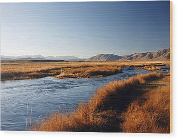 Owens River Wood Print by Michael Courtney