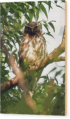 Wood Print featuring the digital art Owl In Contemplation by Pravine Chester