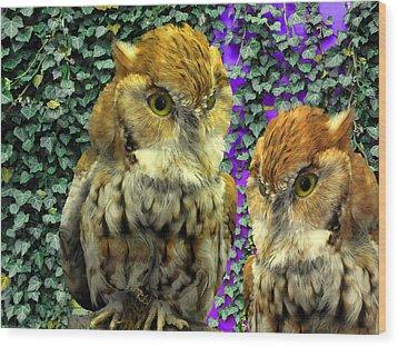 Owl Look Wood Print by Lynda Lehmann